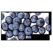 Butter Braid flavors - Blueberry Cream Cheese